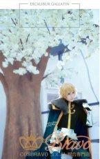 画像3: Fate/Grand Order FGO ガウェイン 最終再臨 コスプレ衣装 修正版 (3)